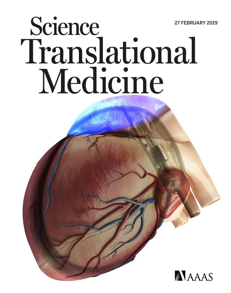 Science Translational Medicine has just published our paper on hybrid bioelectronic treatment of atrial fibrillation. Congrats to Emile!