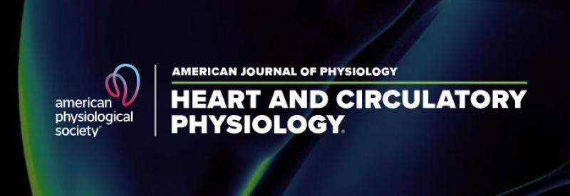 Tim de Coster discusses shock-free cardioversion in Am J Physiol Heart Circ Physiol